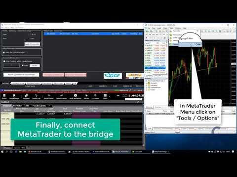 Metatrader Interactive Brokers Bridge Quickstart Tutorial Youtube