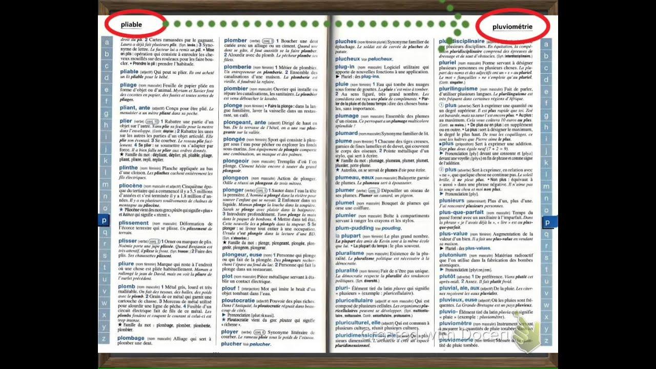 chercher dans un dictionnaire youtube