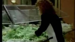 Mary Jo And The Salad Bar