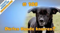 TGH 108 : Dürfen Hunde knurren - wann ist knurren Ernst? - Hundeschule Stadtfelle