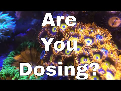 Dosing Calcium, Alkalinity & Magnesium In A Saltwater Aquarium | Red Sea Reefer XL 425 Build