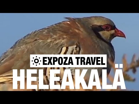 Heleakalä (Hawaii) Vacation Travel Video Guide