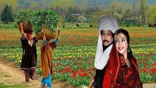 Dgha baz surdi hami Attaullah Khan Esakhelvi, Punjabi, Seraiki Orignal Audio Song
