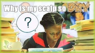 The Scalp (Part 2/3) ~ Dry Scalp Thumbnail
