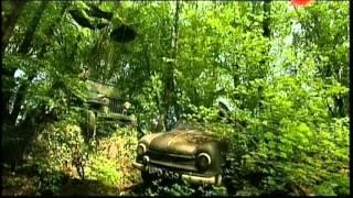Садовое искусство 21 века №4