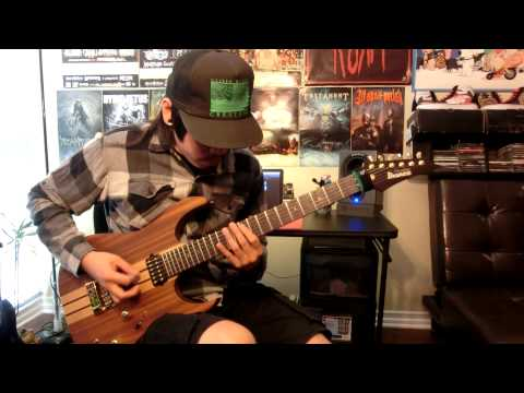 Lamb of God - Ashes of The Wake (full album guitar cover)HD