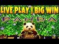 BIG WIN WILD PANDA GOLD Slot Machine Live Play And Bonus mp3