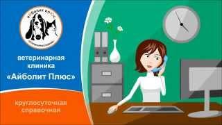 Ветеринарная клиника Айболит Плюс(Сеть ветеринарных клиник Айболит Плюс в Москве и Новосибирске., 2014-12-03T08:13:30.000Z)