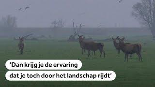 NIEUW LAND: Nederland krijgt er een groot nationaal park in Flevoland bij