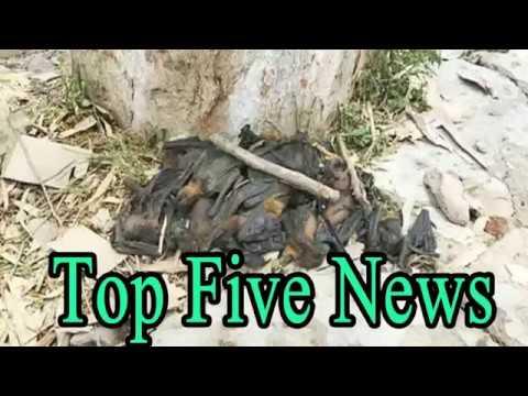 Top Five News Bulletin