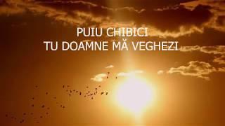 Puiu Chibici - Tu, Doamne ma veghezi