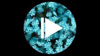 Видео урок как сделать ретушь фото (Ретушевка фотографии)