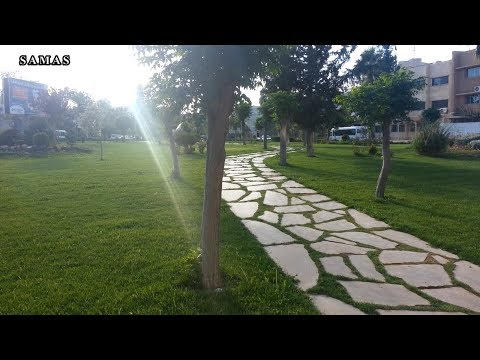 إحياء جامعة دمشق - انتِ أحلى // Damascus University