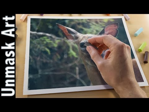 Painting a Deer with Soft Pastels | Live Tutorial Part 1