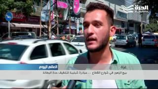بيع الزهور في شوارع غزة ... مبادرة شبايبة لتخفيف حدة البطالة