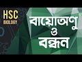 ০৯৯) অধ্যায় ৩ - কোষ রসায়ন : বায়োঅনু ও বন্ধন (Biomolecules & its Bond) [HSC | Admission]