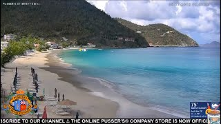 🔴 LIVE-STREAM : Pusser's At Myett's Beach Cam in Cane Garden Bay, Tortola, BVI