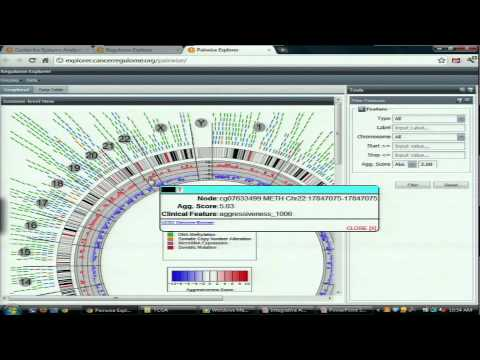 Integrate Analysis and Interactive Exploration of Data from TCGA - Ilya Shmulevich