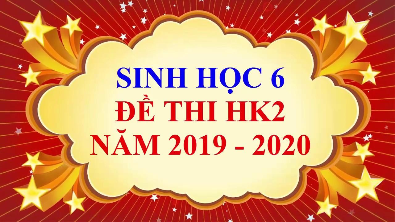 Sinh học lớp 6 – Đề thi HK2 năm học 2019 – 2020