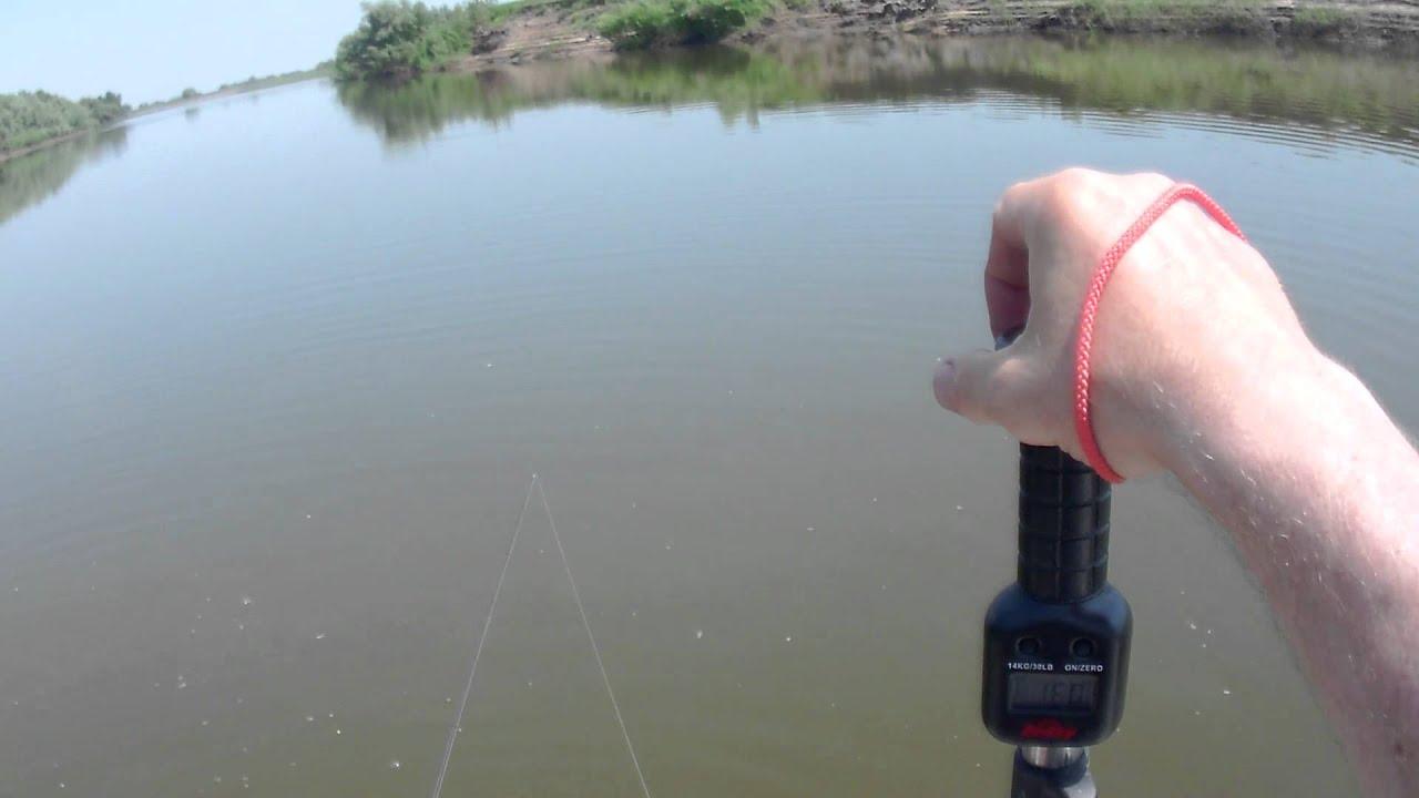 видео ловля на ахтубе