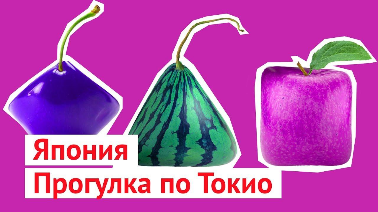 Каникулы в Японии: перелет в Токио, женщины и фрукты