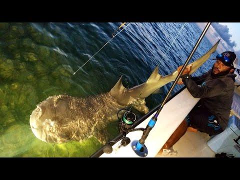 GIANT SHARK Almost Got Me!! | Monster Mike Fishing