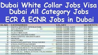UAE Dubai Computer Operator Jobs l Data Entry Operator Jobs in Dubai l ECR and ECNR Jobs in Dubai