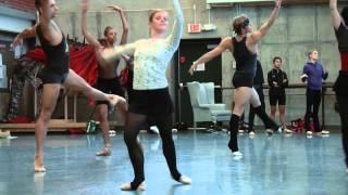 New Dance Partners 2014: Documentary Trailer