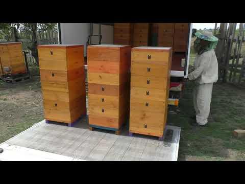 Отбор мёда 2019 механизация на пасеке .