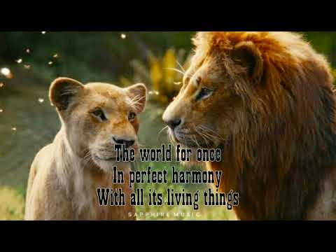 Beyonce x Billy Eichin x Donald Glover x Seth Rogen- Can You Feel the Love Tonight The Lion King