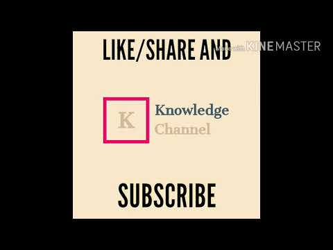 Videos and mp3 free download in youtube gull guidelines by knowledge channel