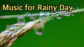 3-HOURS of Super Relaxation Music with comfortable rainy sound