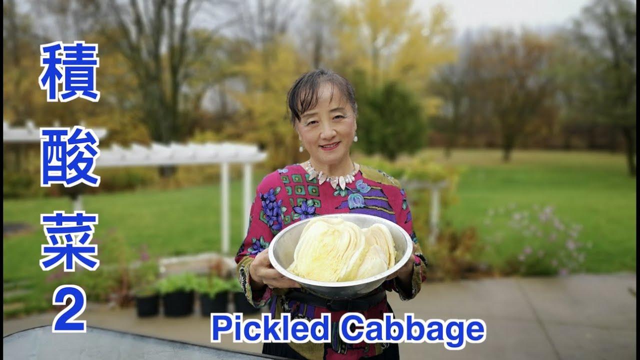 How to Make Pickled Cabbage, Preserved Napa Cabbage 积酸菜2,酸菜積好了,正宗東北味,色澤微黃透亮,酸味純香,口感脆嫩。 腌酸菜