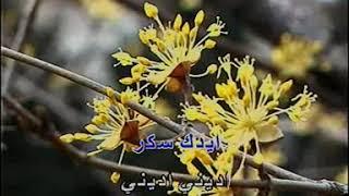 اجمل ما غني احمد عدويه بنت السلطان كاريوكي ahmed disco dj
