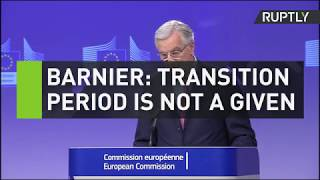 Barnier: Transition period is not a given