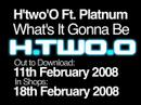H'two'O ft Platnum - Whats It Gonna Be