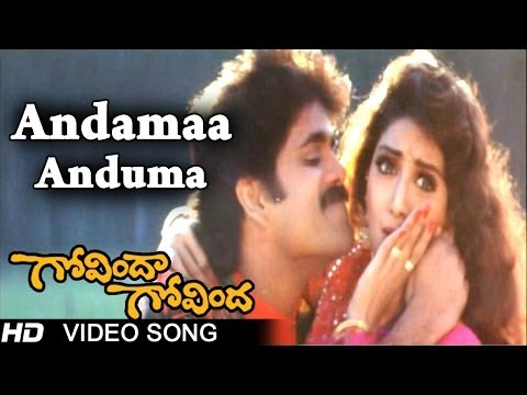Govinda Govinda Movie  Andamaa Anduma Video Song  Nagarjuna, Sridevi