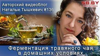 Ферментация травяного чая в домашних условиях