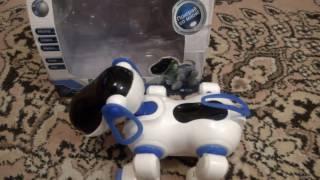 Электронный питомец (Интерактивный)/Electronic pet