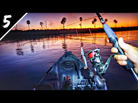 The BIG FISH Come Out AT NIGHT!!! (Ocean Kayak Fishing)