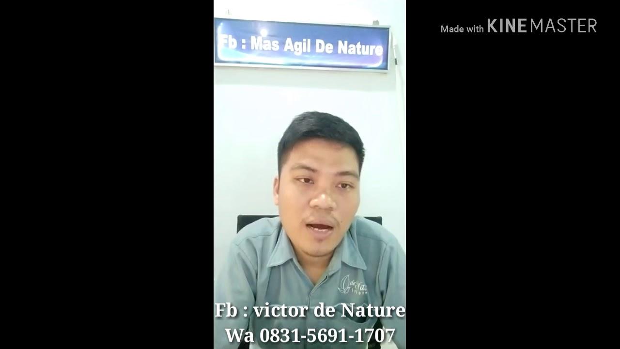 Cara mengobati penyakit batu ginjal/kencing batu - YouTube