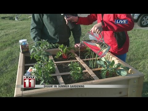 Diggin' In: Summer Gardening (5)
