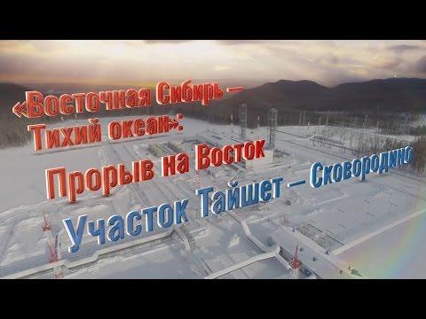Проект «ВСТО-1»