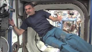 Dragon arrives at ISS on This Week @NASA