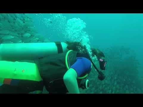 Diving Las Catalinas Sep 2017