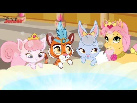 Whisker Haven Tales - Hat's a Wrap! - Official Disney Junior UK HD