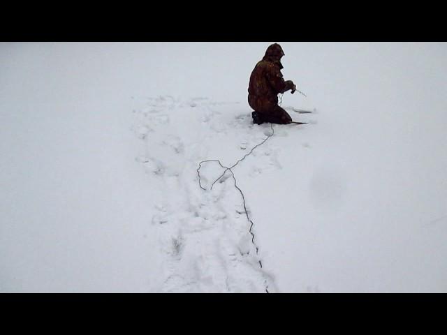 Первый выход на лед в 2016 году