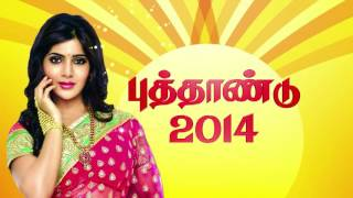 MEDIA95 ADS- SARAVANA STORES GOLD PALACE -30 SEC PONGAL 2013