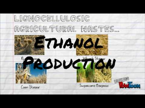 Ethanol Production From Agricultural Waste