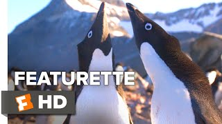 Penguins Exclusive Featurette - All About Steve (2019) | Movieclips Indie